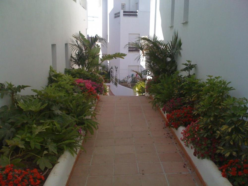 Oliplant zonas verdes empresa de construcciones de zonas - Empresa jardineria malaga ...