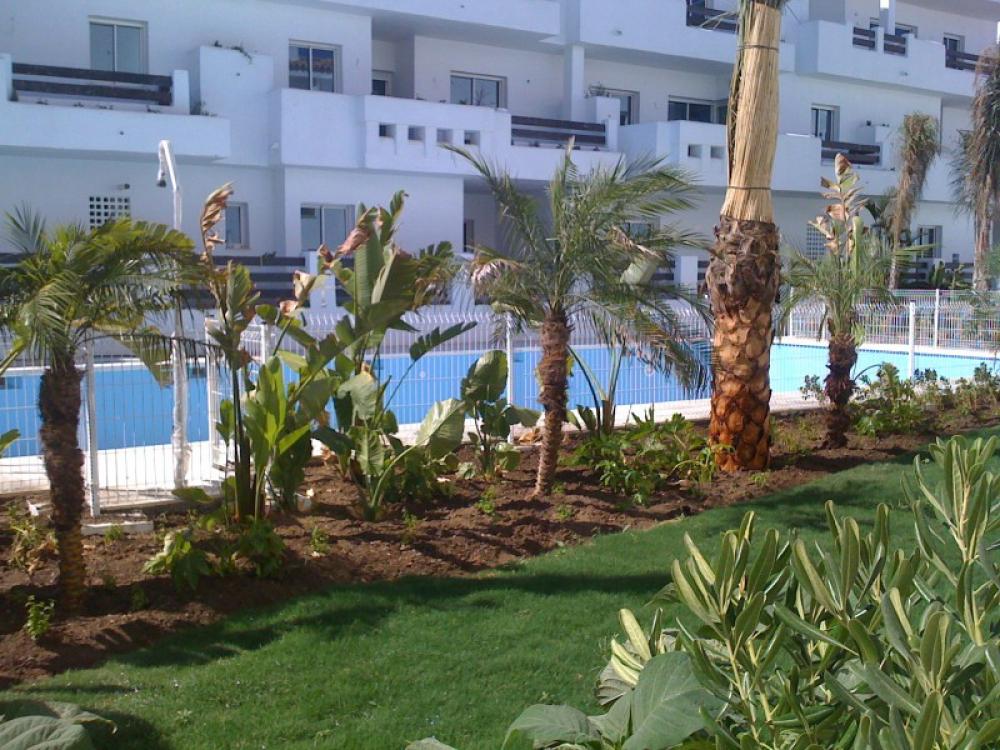 Oliplant zonas verdes empresa de construcciones de zonas - Empresas de jardineria en malaga ...