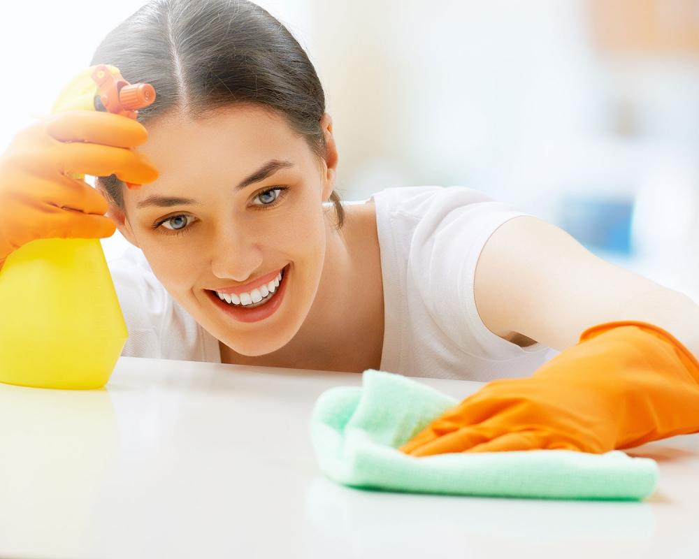 Limpiezas esai empresa de limpiezas del hogar en madrid for Empresas de limpieza en toledo