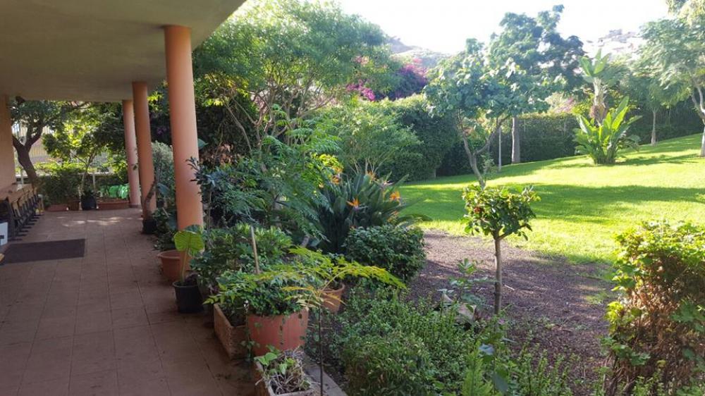 Empresas de jardineria en tenerife interesting kenburns with empresas de jardineria en tenerife - Jardineros tenerife ...