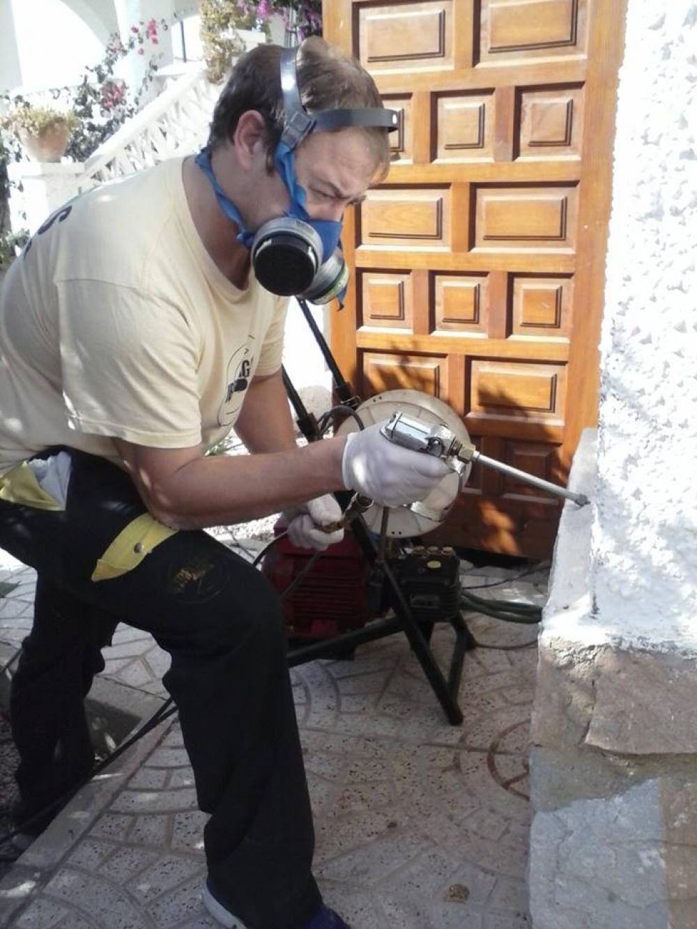 Fumigar cucarachas madrid precio beautiful en madrid with - Exterminar hormigas en casa ...