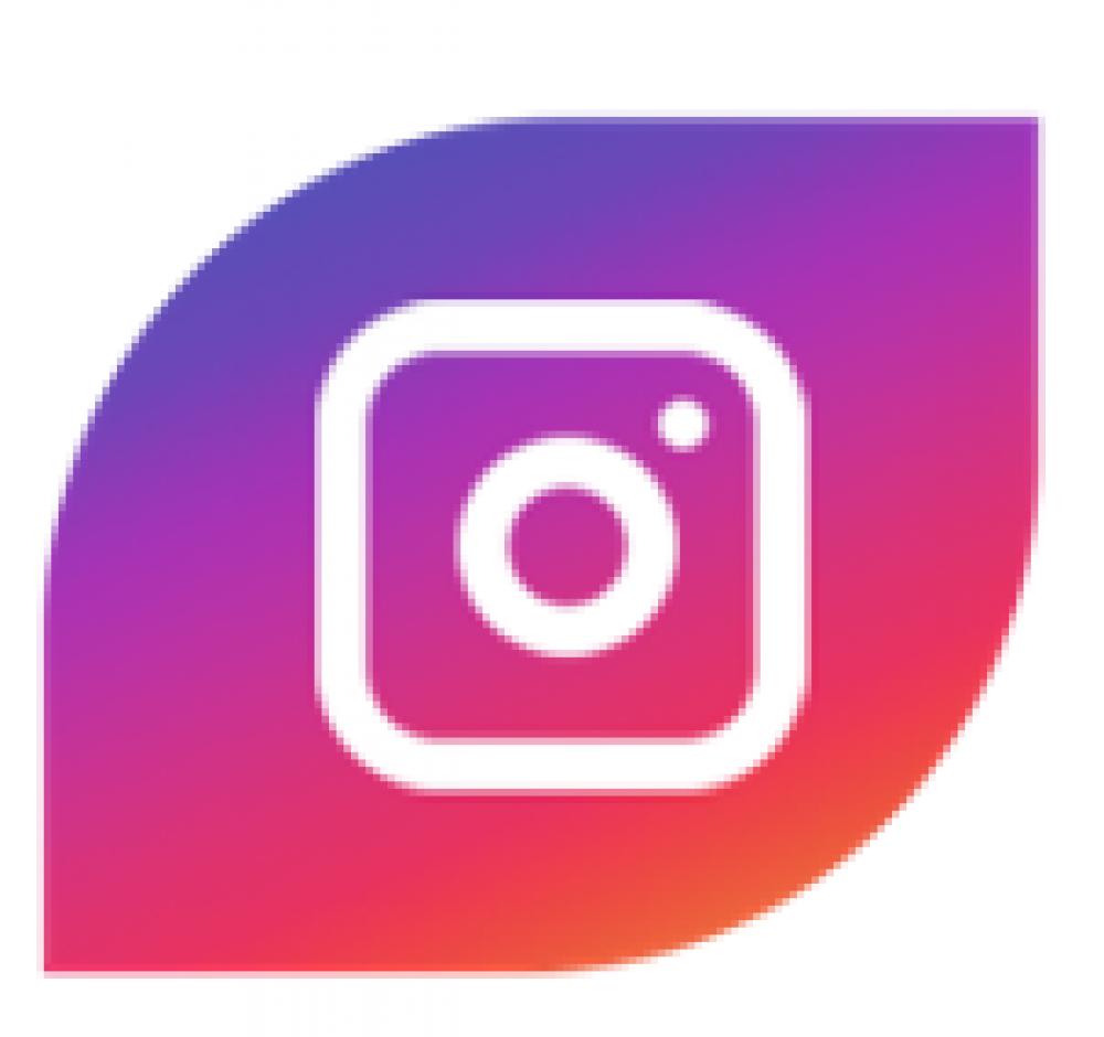 https://www.instagram.com/maxillaves/?hl=es