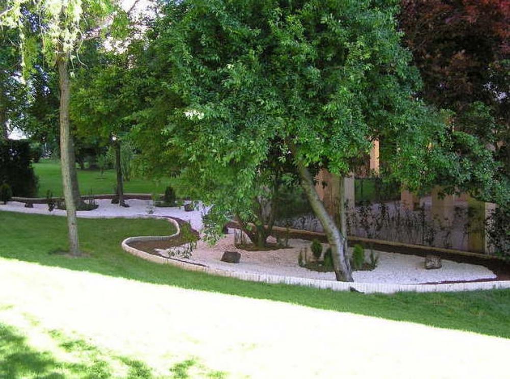 Jardiner a naranjo jardineros profesionales para tala y for Tala de arboles madrid