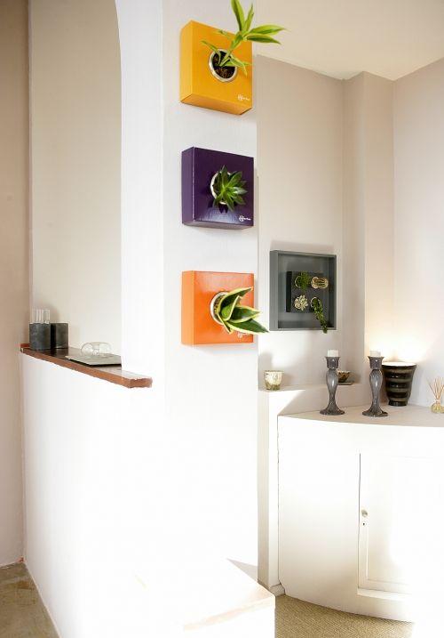 Flowerbox inventor del cuadro vegetal tienda online de Cuadros para el jardin