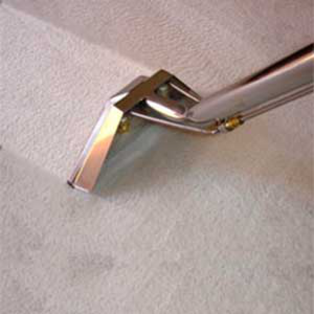 Limpiezas santamaria limpieza de tapicer a en madrid for Precios limpieza alfombras madrid
