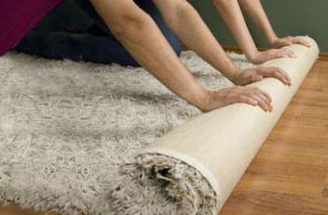 Prolintec empresa de limpieza y conservaci n de alfombras - Limpieza casera de alfombras ...