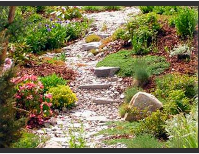 Plante verde jardineros expertos en mantenimiento y dise o - Empresas de jardineria en malaga ...
