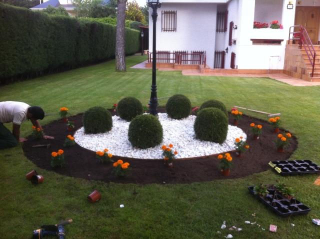 Enebro trabajos forestales y jardiner a jardineros - Trabajo jardineria madrid ...