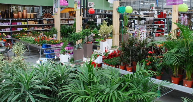 Endanea garden centro de jardiner a en guip zcoa v vero for Jardineria online