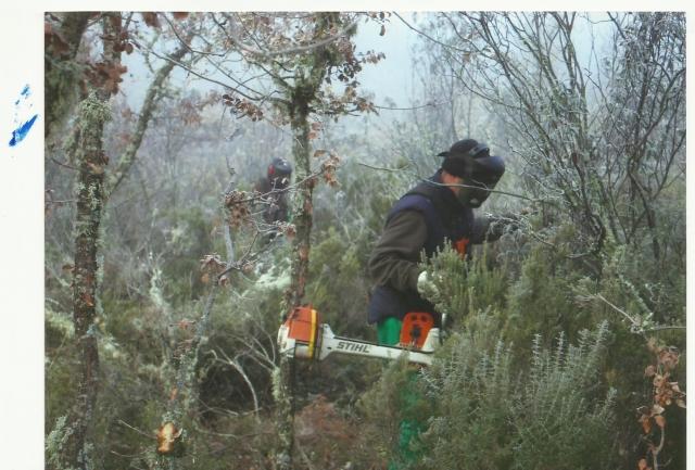 Agromadrid servicio de jardineros contratar jardineros for Centros de jardineria en madrid