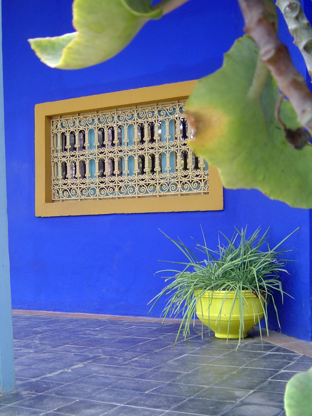 Blascolor empresa de pinturas y tratamientos de paredes for Empresas de reformas en sevilla y provincia