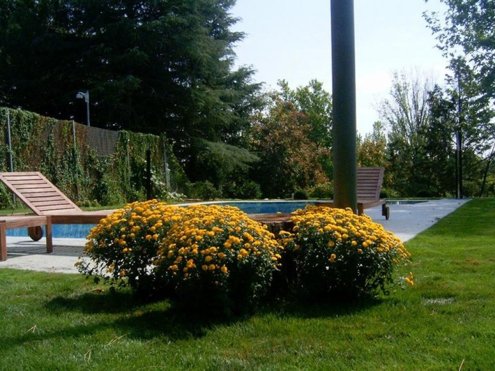 Dise o y gesti n sostenible empresa de jardiner a econ mica en madrid empresa de dise o de - Diseno jardines madrid ...