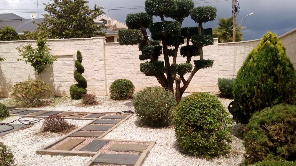 Jardineria nico empresa de jardiner a en la ca ada podas - Jardineria en valencia ...