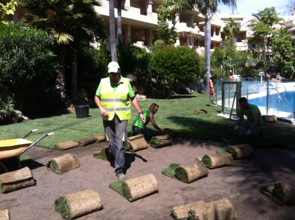 Ongreenline dise ar jardines en marbella construcci n y for Creacion de jardines