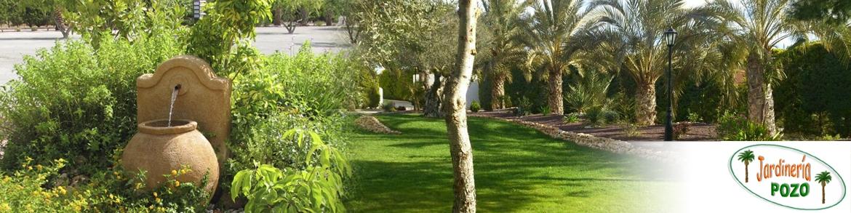 Jardiner A Pozo Empresa De Jardiner A En Alicante