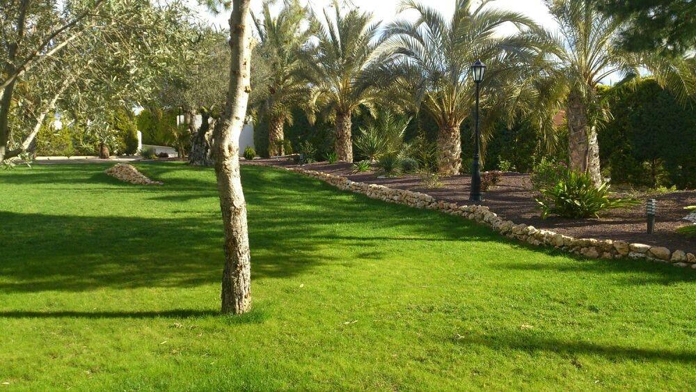 Jardinería Pozo, empresa de jardinería en Alicante. Jardineros ...