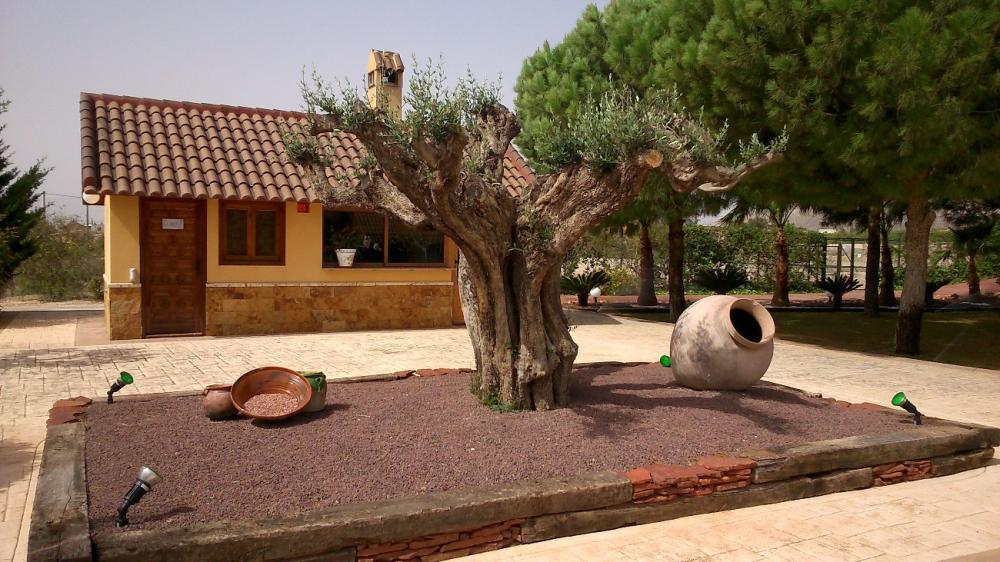Jardiner a pozo empresa de jardiner a en alicante - Jardines economicos ...