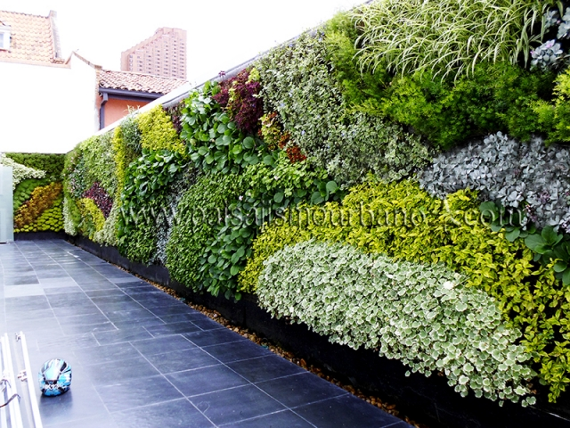 Jardines verticales de dise o jardines verticales en la for Productos jardineria barcelona