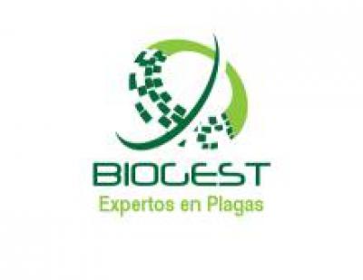 Biogest control de plagas barato en alicante eliminar - Mercerias en alicante ...