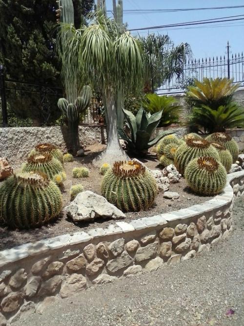 Jardiner A En Alicante Empresa De Jardiner A Para Dise Ar