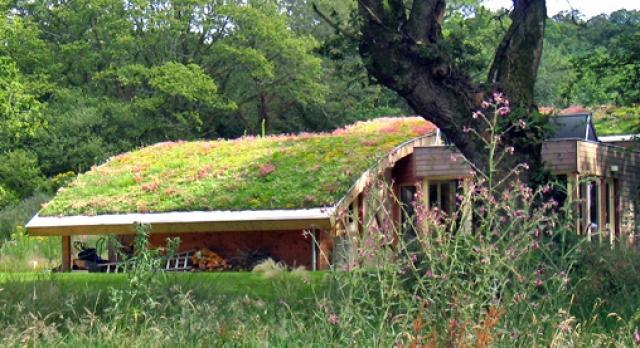 empresa de sostenibles en granada empresa de con materiales sostenibles en granada diseo de jardines verticales en granada