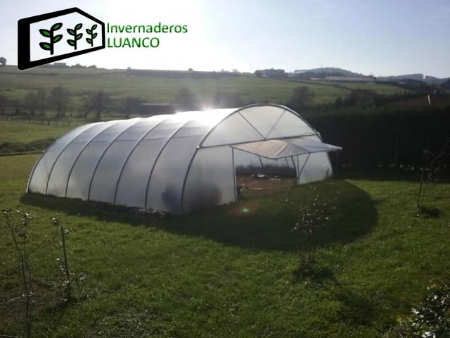 Invernaderos luanco venta de invernaderos en galicia - Estructuras invernaderos segunda mano ...